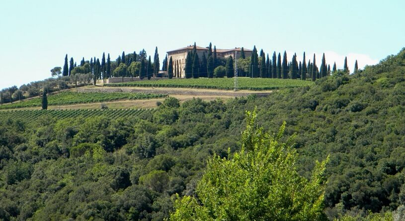 Vinícola Argiano em Montalcino
