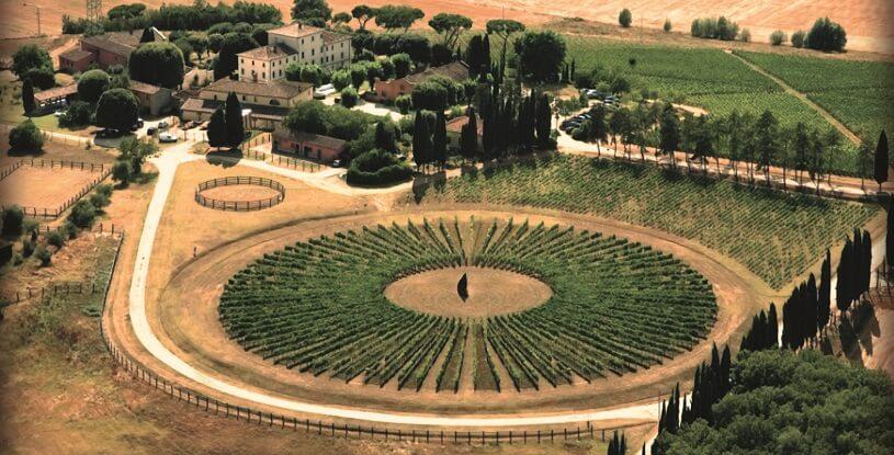 Vinícola Avignonesi vista do alto