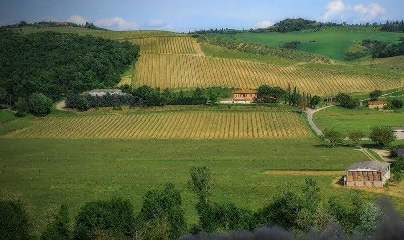 Azienda Agricola Santa Giulia