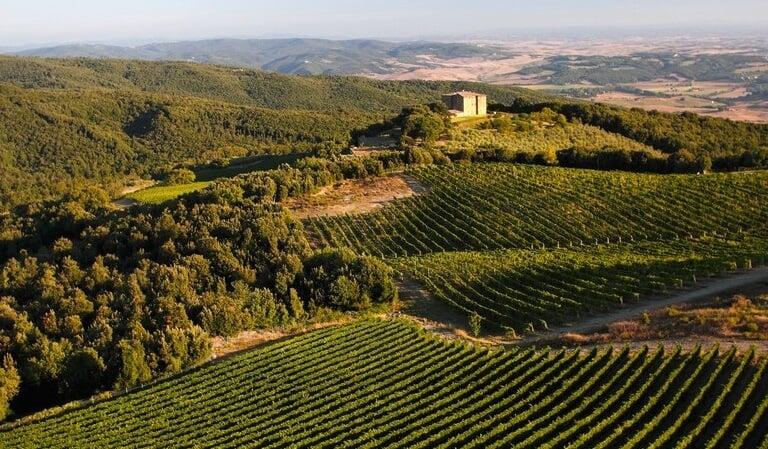 Propriedade da vinícola Caprili