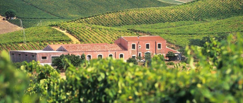 Vinícola Gambino Vini em Sicília
