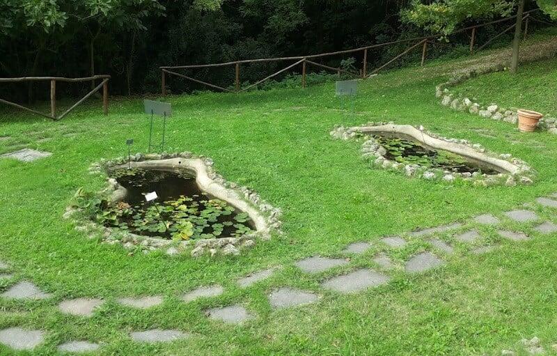 Laguinhos do Orto Botânico dell'Universitá di Siena