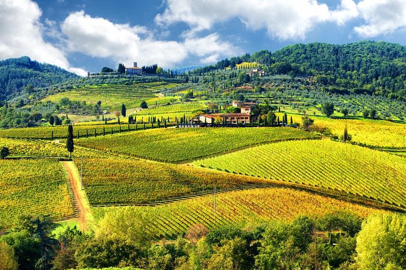 Vinícola em Chianti